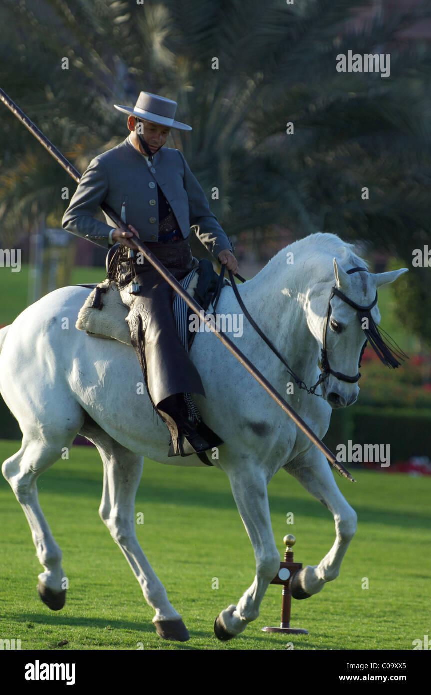 andalusian horses show in emirates palace hotel, abu dhabi