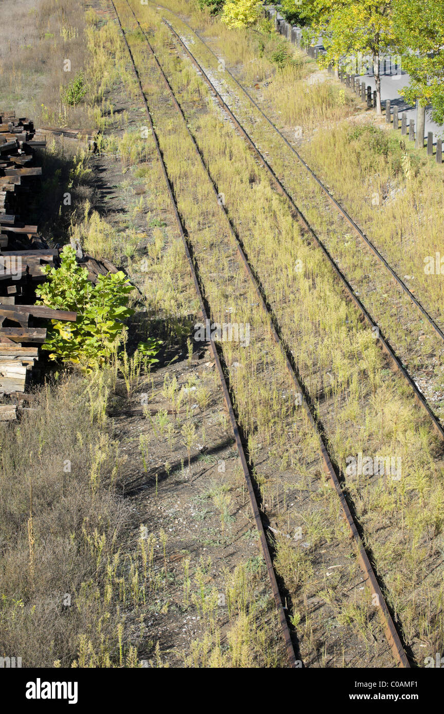 Railroad track out of use and in disrepair, worn and rusty in high weeds, shot from above in summer, Pennsylvania, - Stock Image