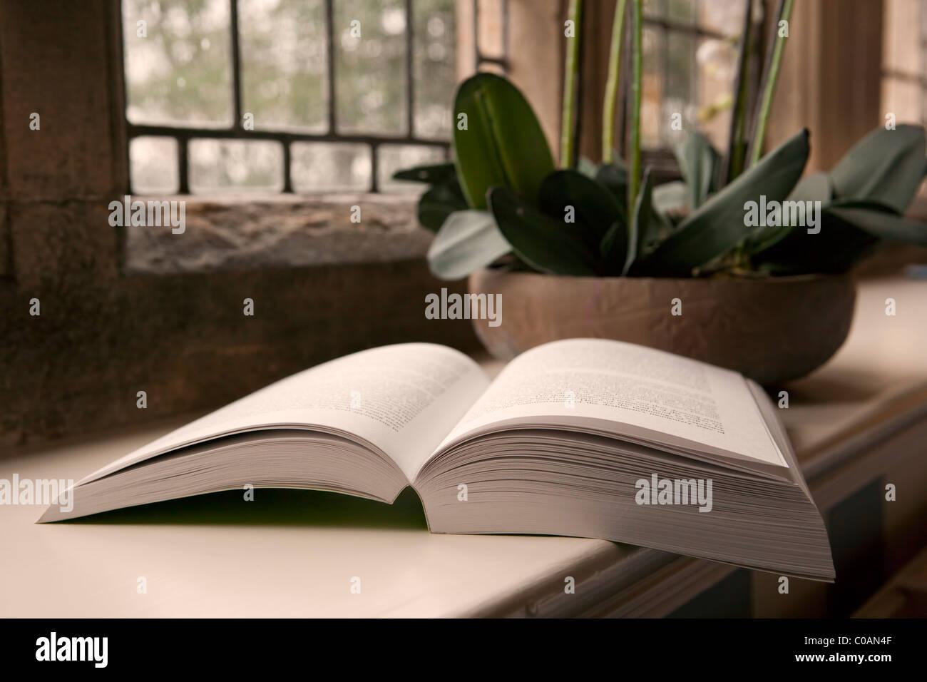 Open book on windowsill - Stock Image