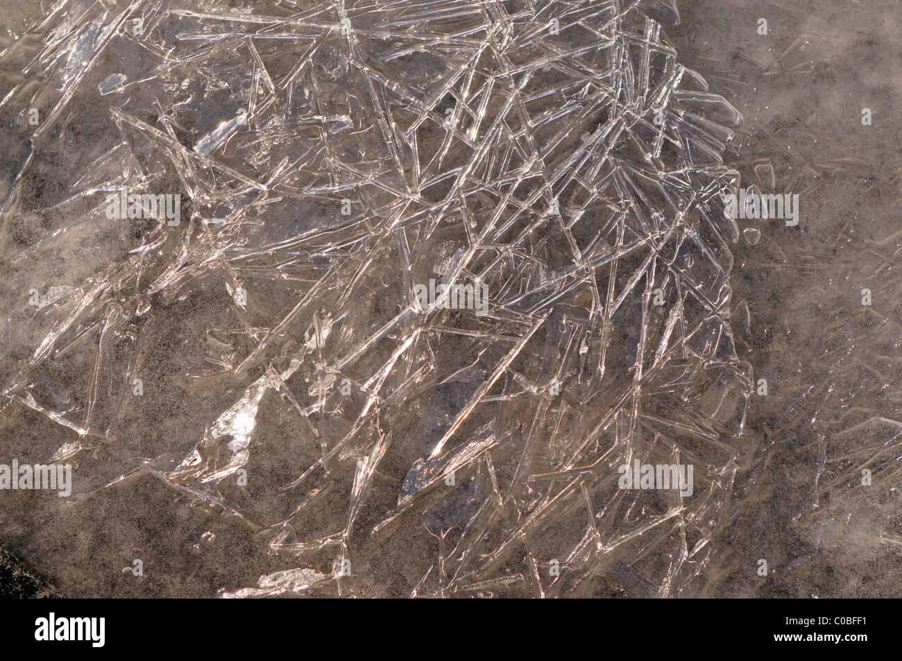 Ice crystals - Stock Image