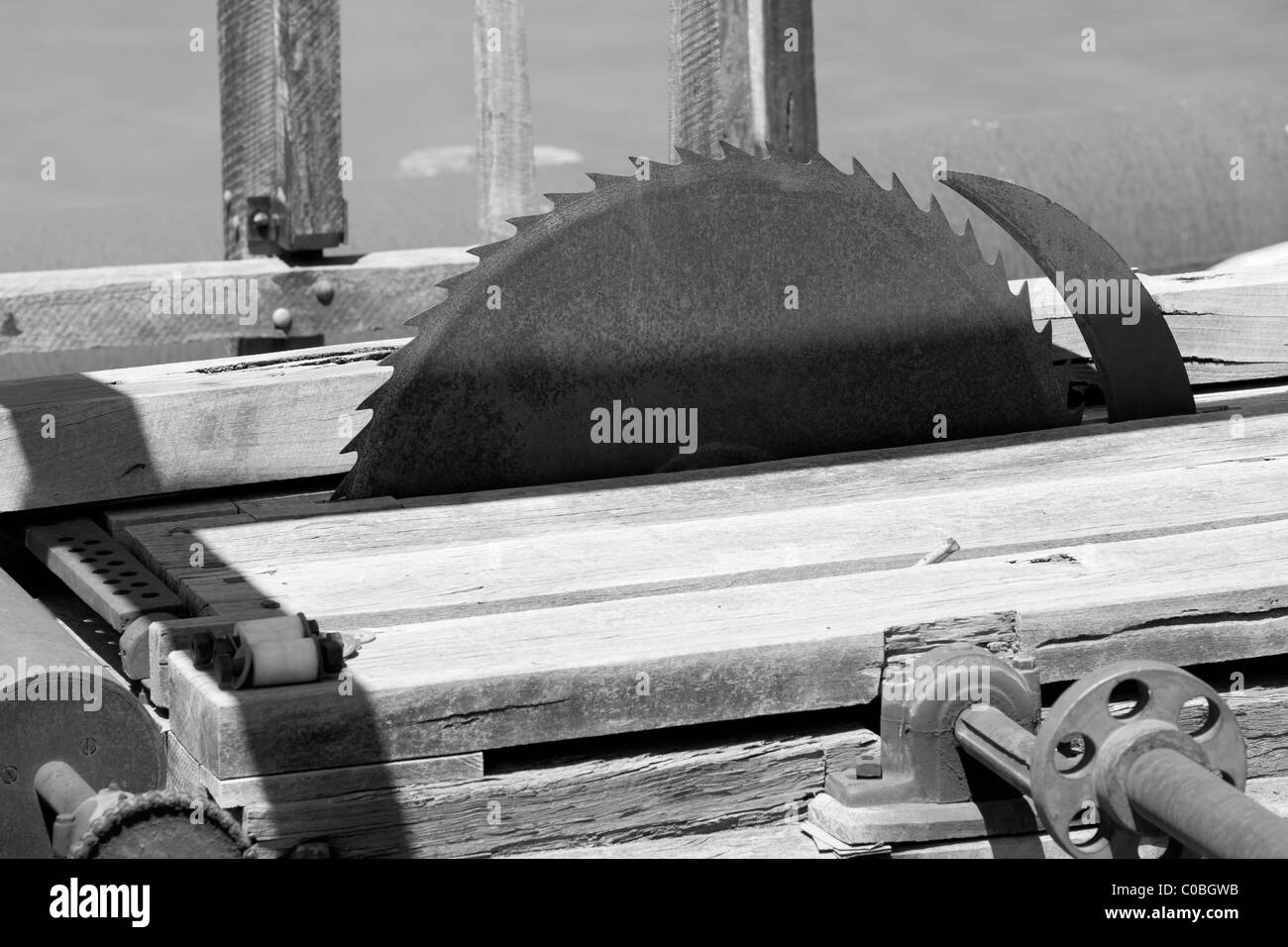 Cutting blade at a saw mill - Stock Image