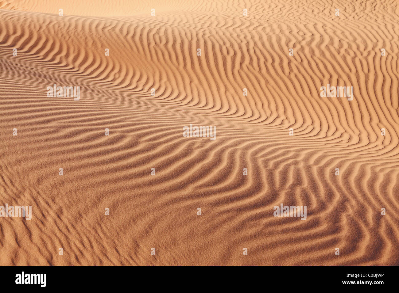 Intricate curves of sand waves on the sand dunes U.S. - Stock Image