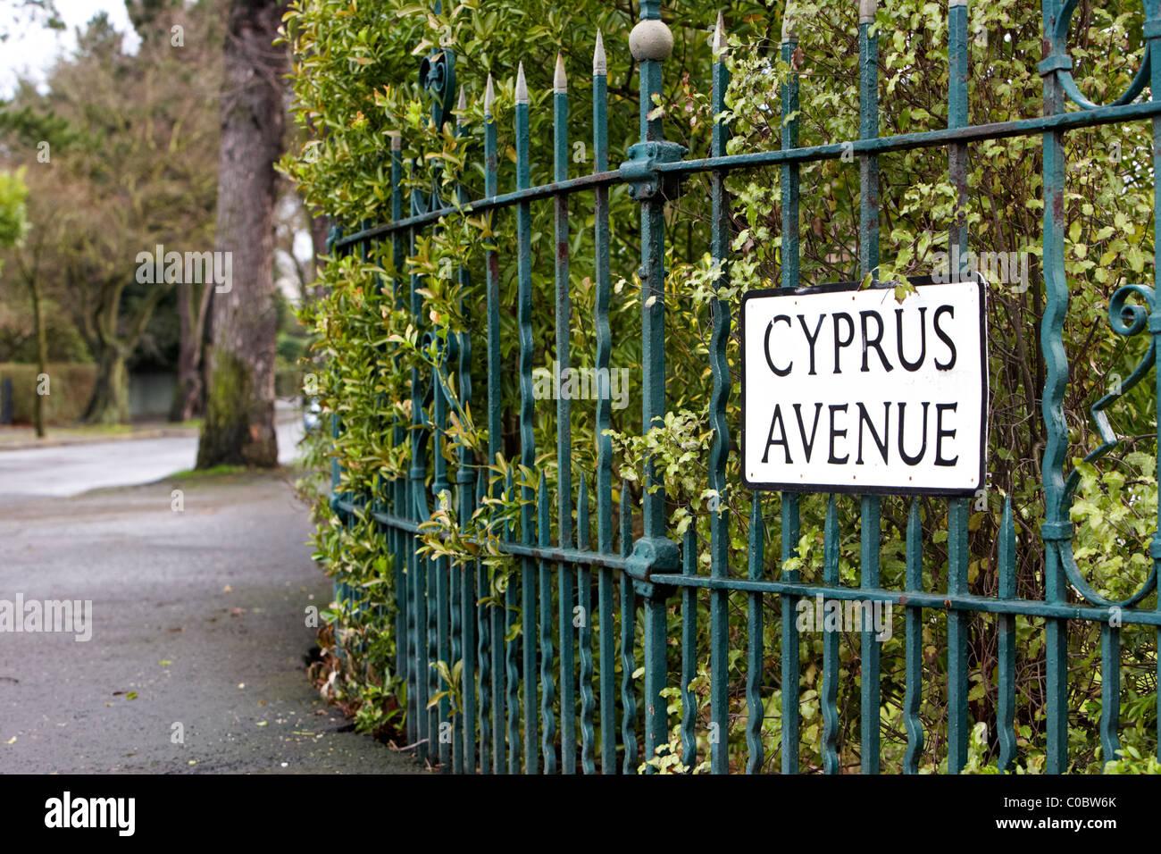 ผลการค้นหารูปภาพสำหรับ van morrison cyprus avenue