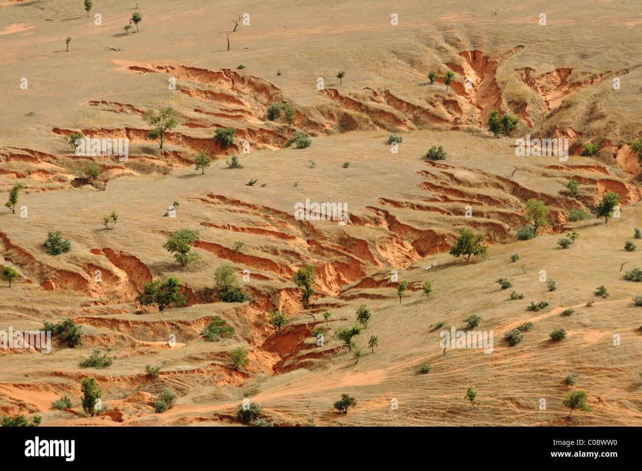 Gully erosion on the Gondo Plain, on the east side of Pays Dogon, Mali. - Stock Image