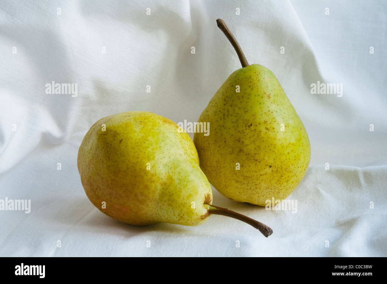 Williams Pears on a white cloth background. - Stock Image