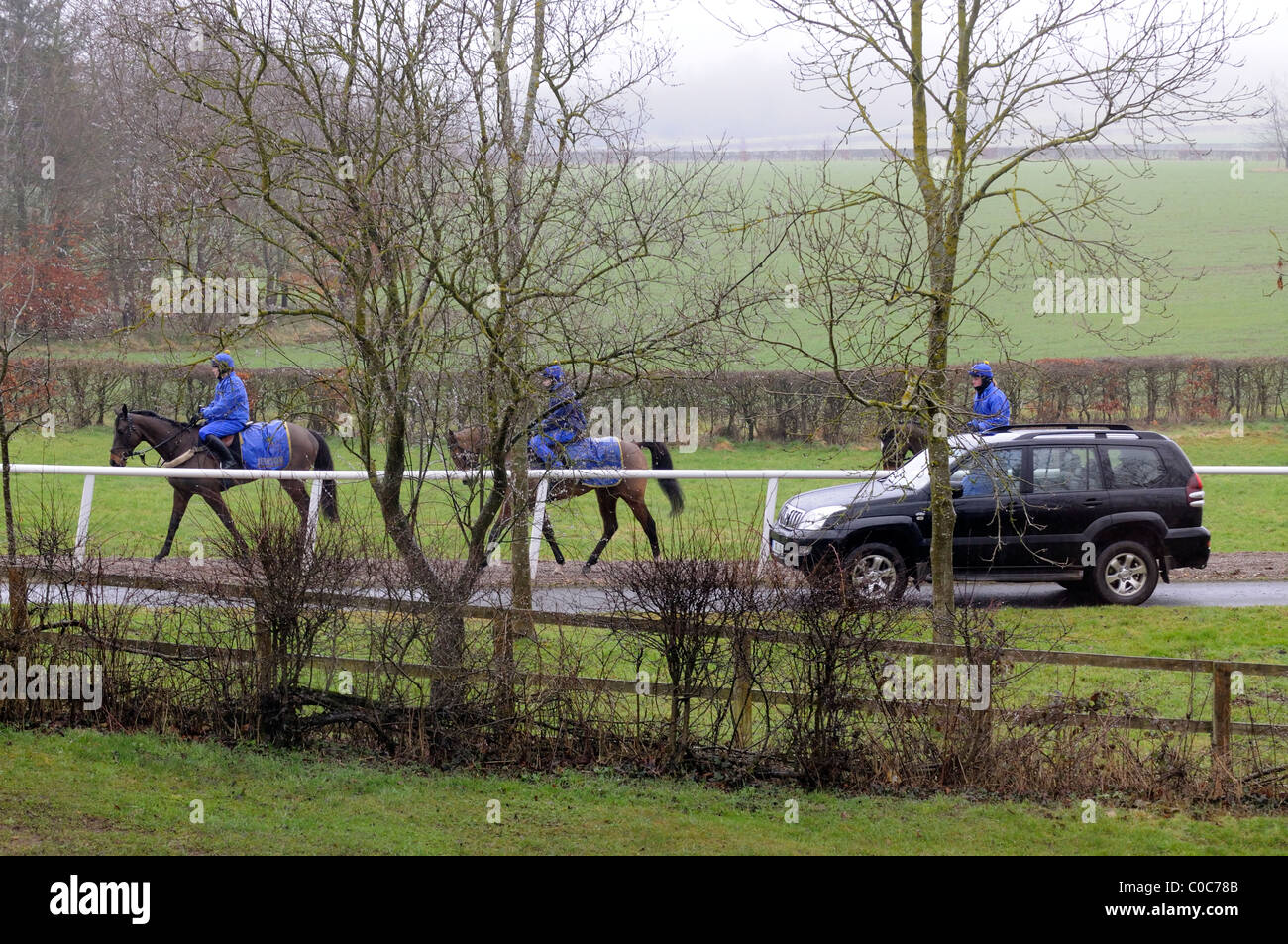 Racehorses being exercised on a wet February morning on the famous trainer Jonjo O'Neill's estate Jackdaws Castle Stock Photo