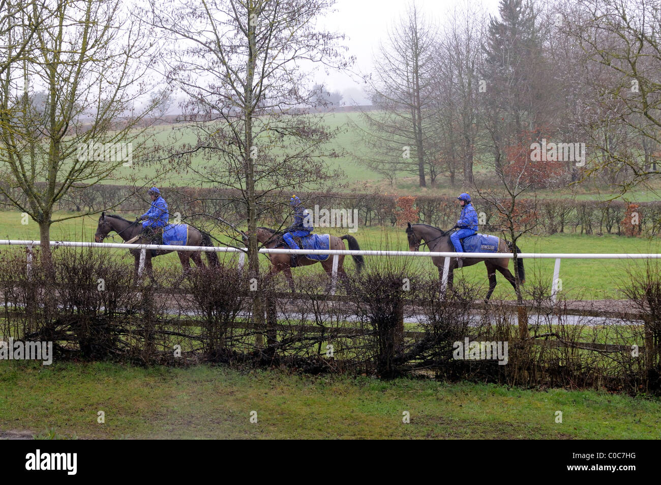 Racehorses being exercised on a wet February morning on the famous trainer Jonjo O'Neill's estate Jackdaws - Stock Image