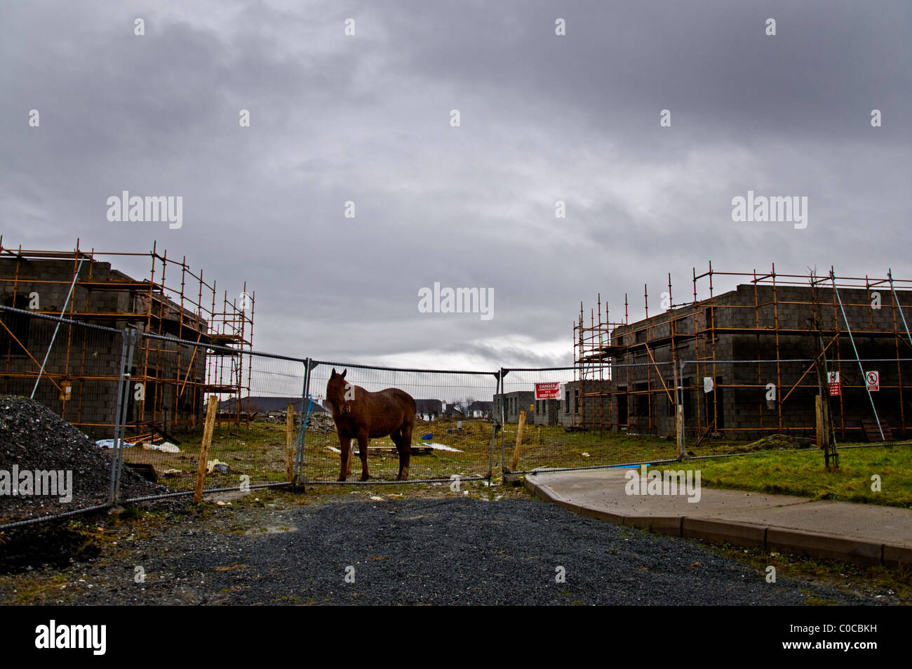 A horse stands on a derelict abandoned building site in rural Ireland - Stock Image