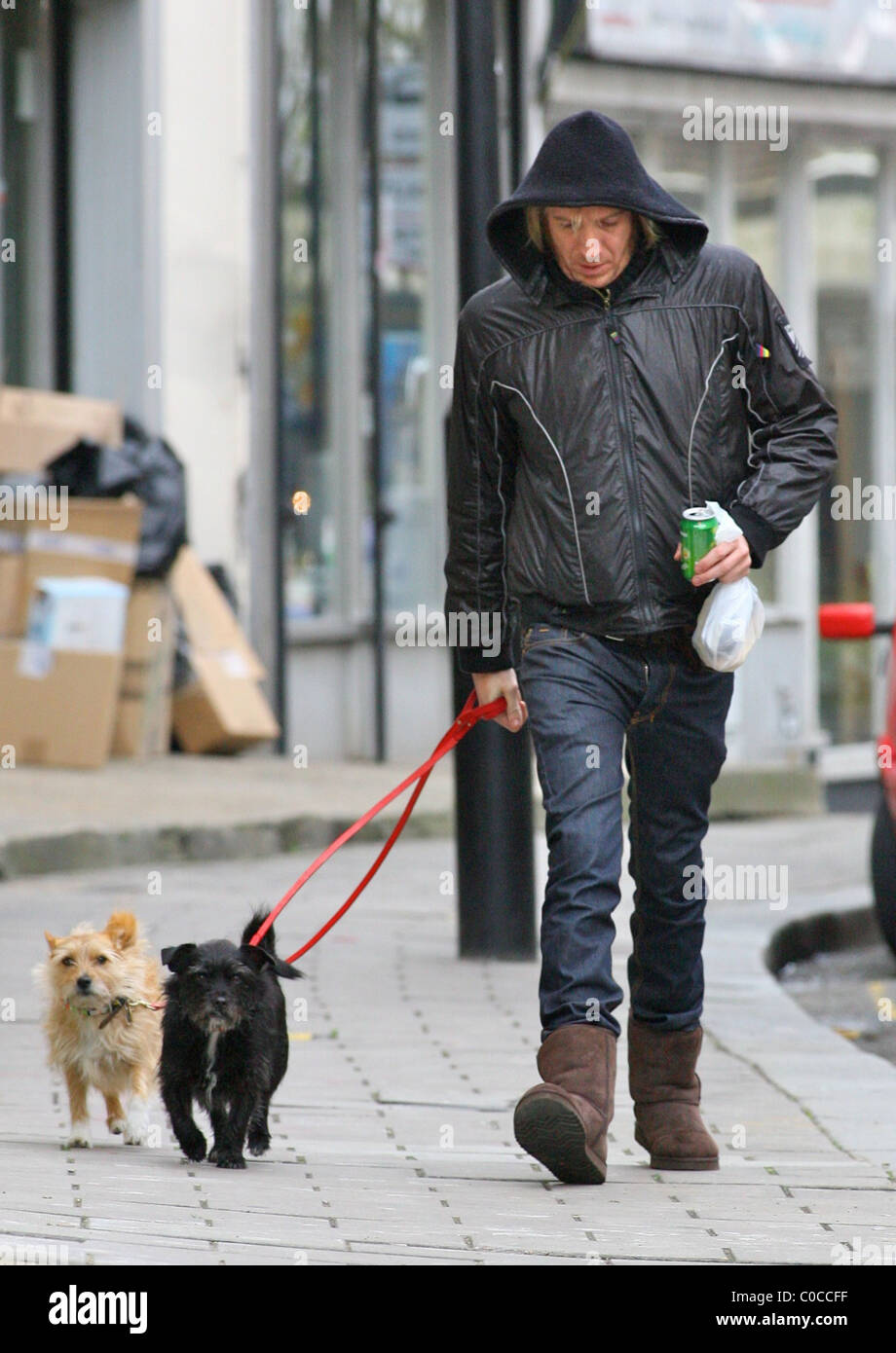 Rhys Ifans takes Sienna Miller's dogs Porgy and Bess out for a walk with him to the shops London, England - - Stock Image