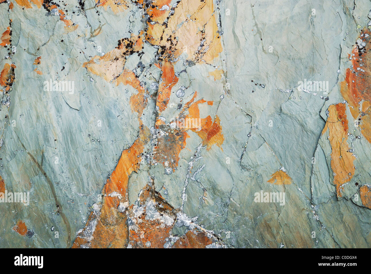 Details and surface of greenish marble untreated. - Stock Image