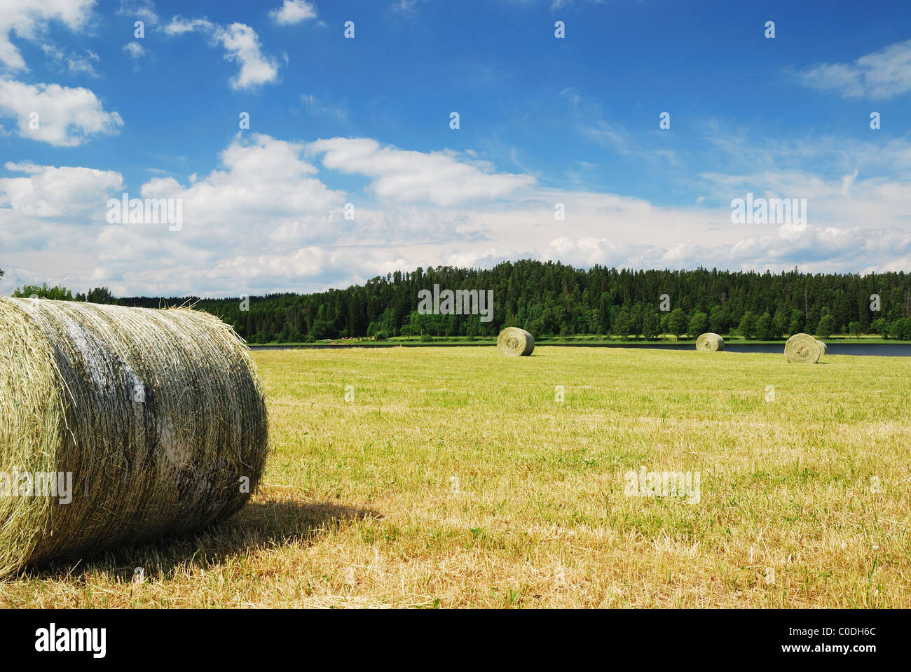Swedish rural landscape with straw packages on the harvested field. - Stock Image