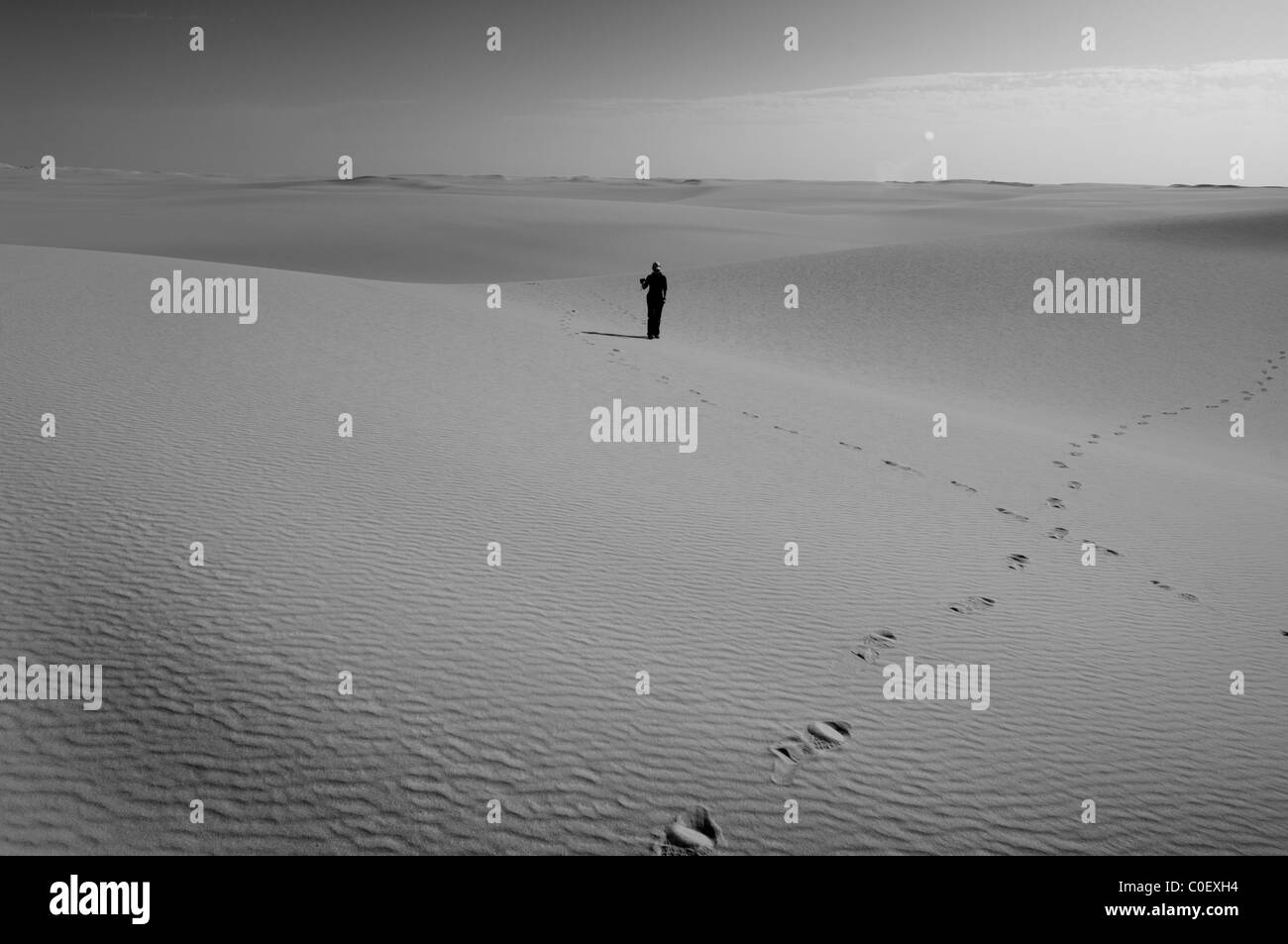 Lone Figure in the Sahara Desert - Stock Image