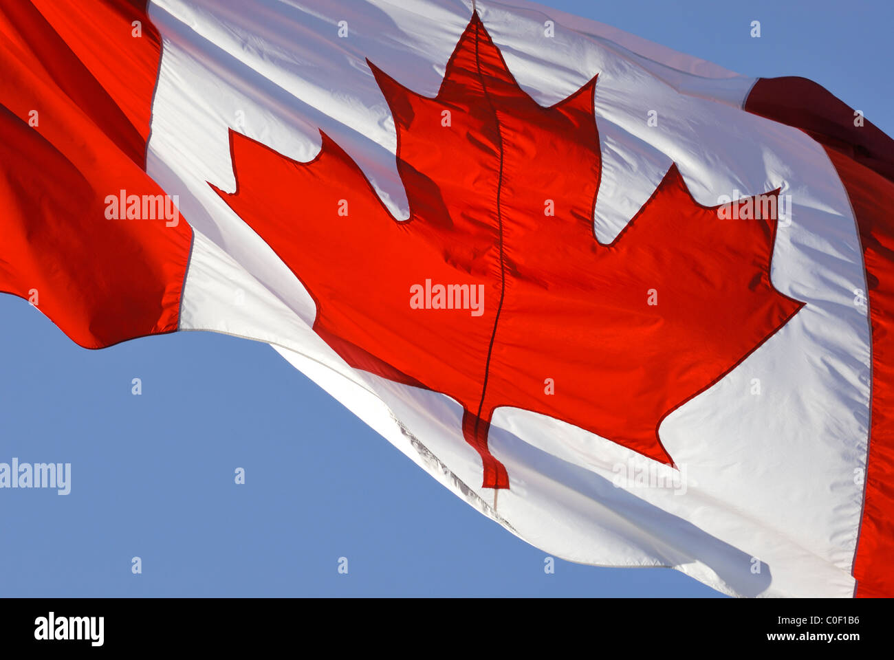 Canadian flag fluttering in the wind with a blue sky in the background. - Stock Image