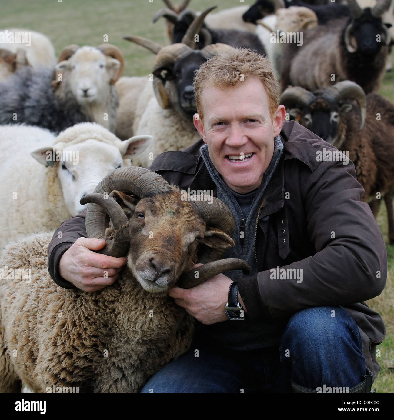 Adam Henson Cotswold farmer with his rare breeds sheep on Adam's farm at Temple Guiting Gloucestershire UK - Stock Image