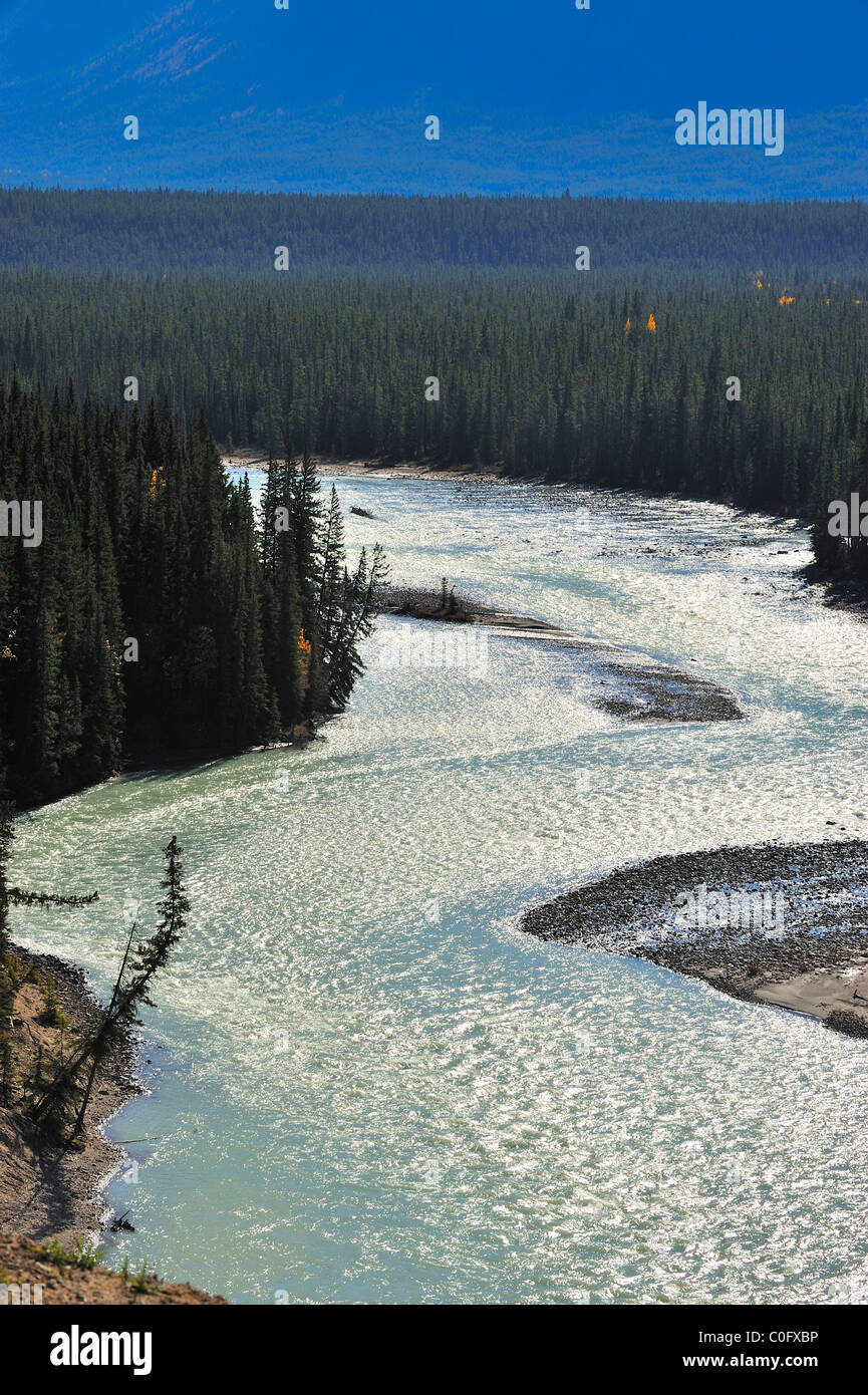 The Athabasca River in Jasper National Park, Alberta Canada. - Stock Image