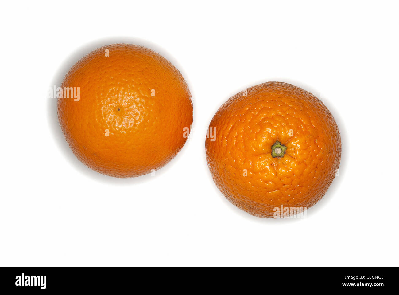 Oranges fruits on white background - Stock Image