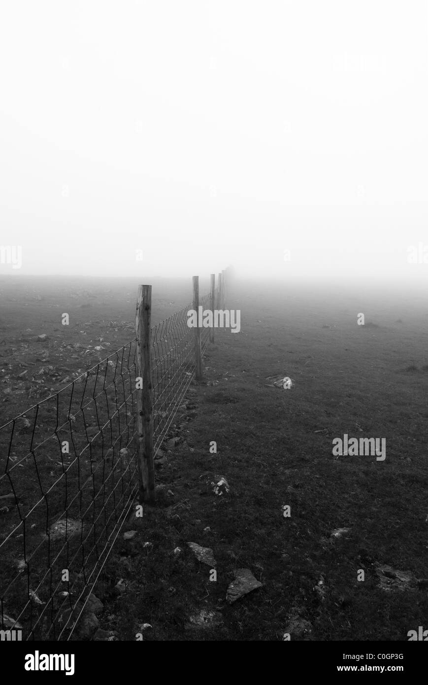Wire fence disappearing into mist, copyspace - Stock Image