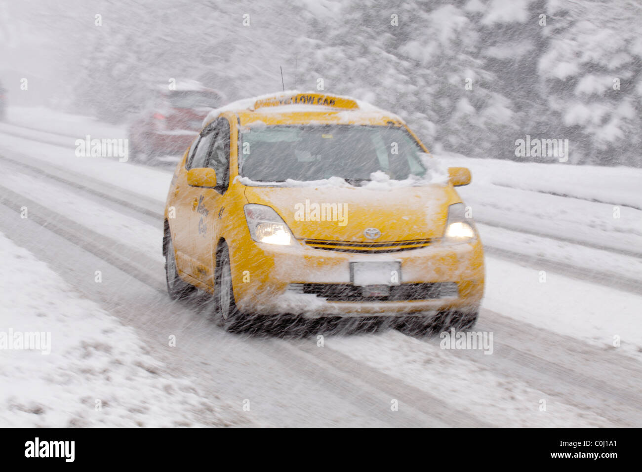 Yellow taxicab and car travelling on rural road during snowstorm in rare winter blizzard in Victoria-British Columbia, - Stock Image