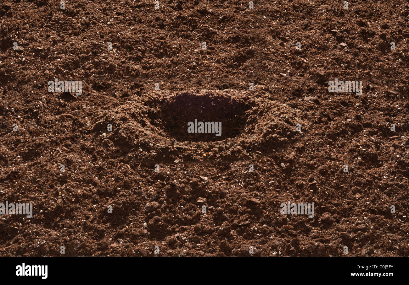 Garden Soil with dug hole for planting - Stock Image