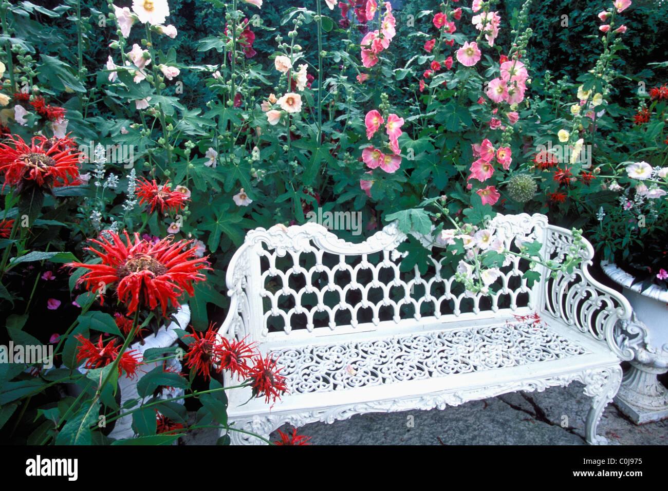 Strange Hollyhocks And Bee Balm Monarda Surround White Metal Garden Theyellowbook Wood Chair Design Ideas Theyellowbookinfo