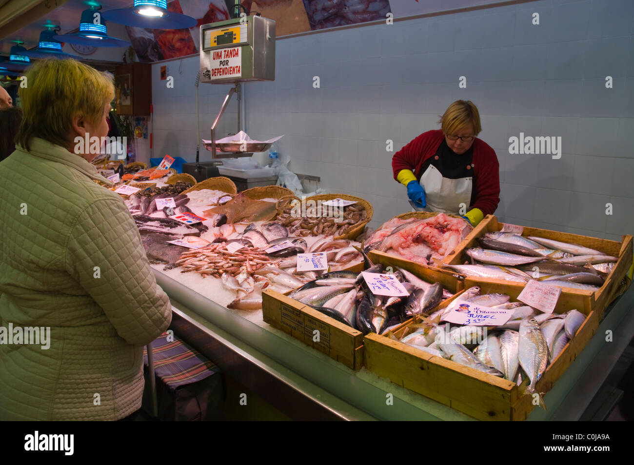 Seafood stall inside new Mercat de Sant Antoni market hall central Barcelona Catalunya Spain Europe - Stock Image