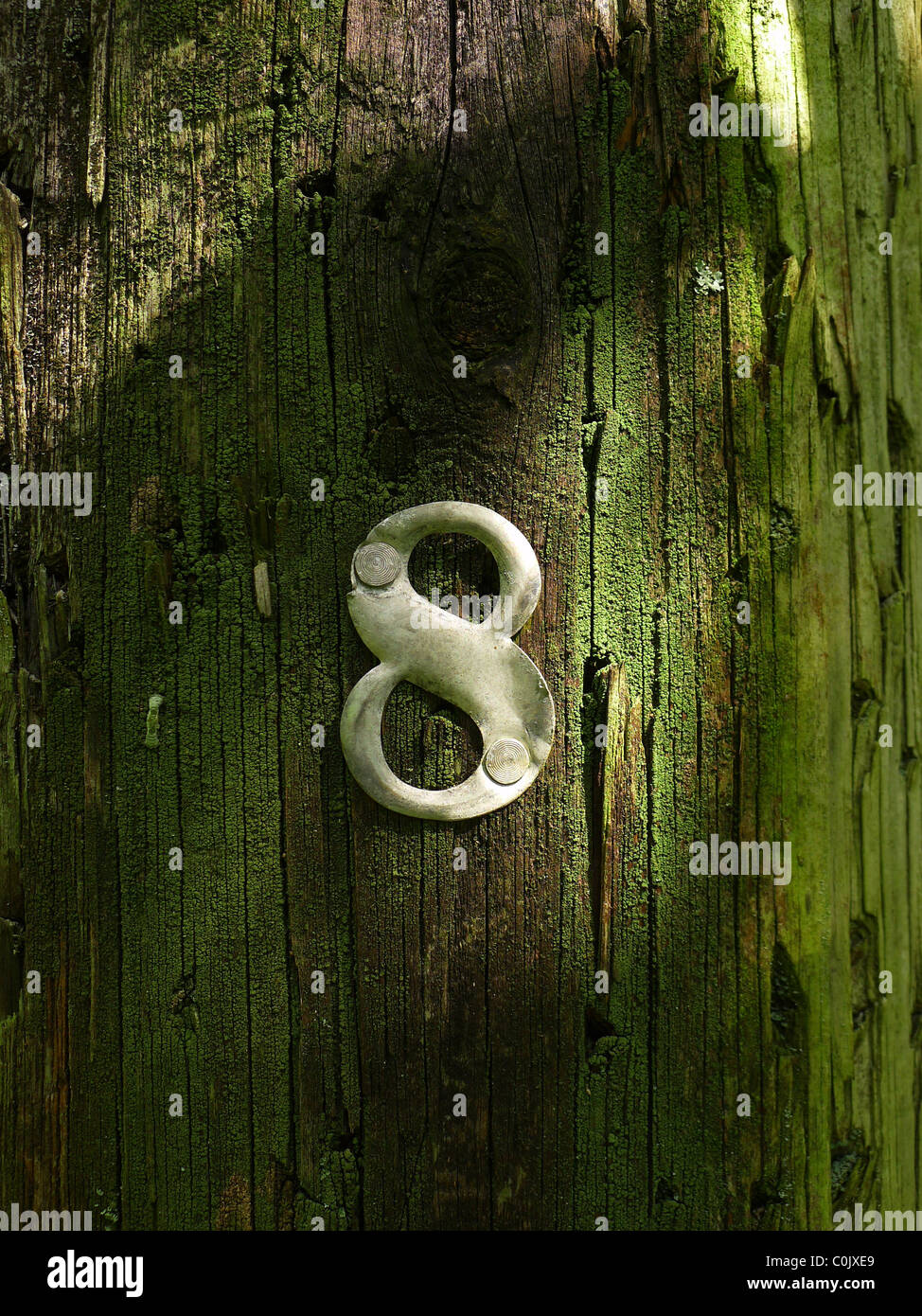 Number eight on telephone pole - Stock Image