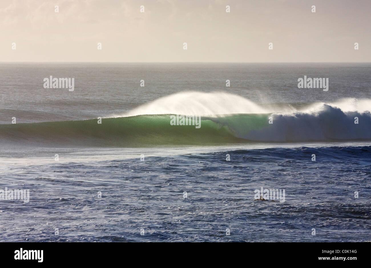Early morning swell, Burleigh Heads Gold Coast Australia - Stock Image