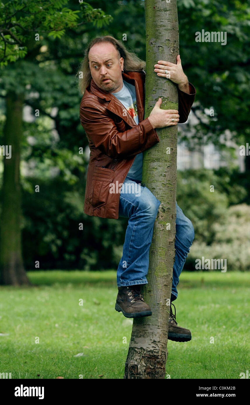 comedian Bill Bailey up a tree - Stock Image