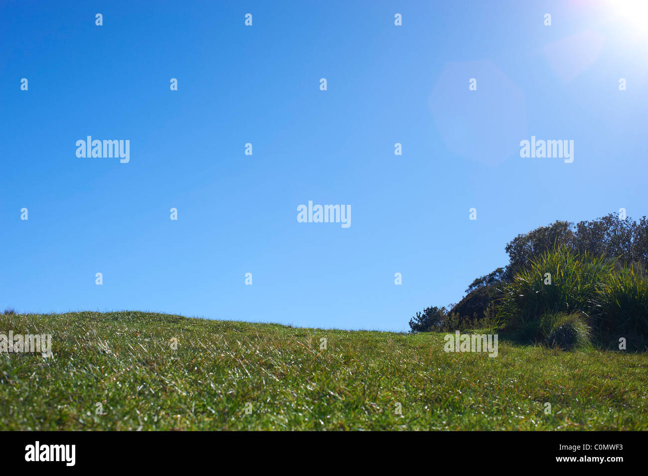 Green grassy hill and blue sky - Stock Image