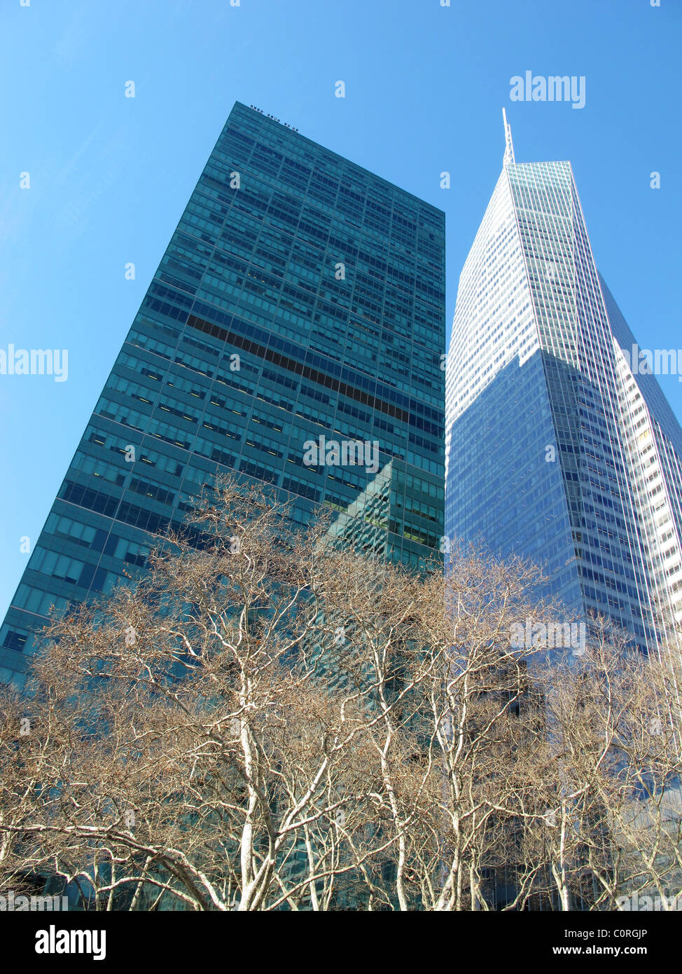 Winter sunshine on Bryant park trees and sky scrapers - Stock Image