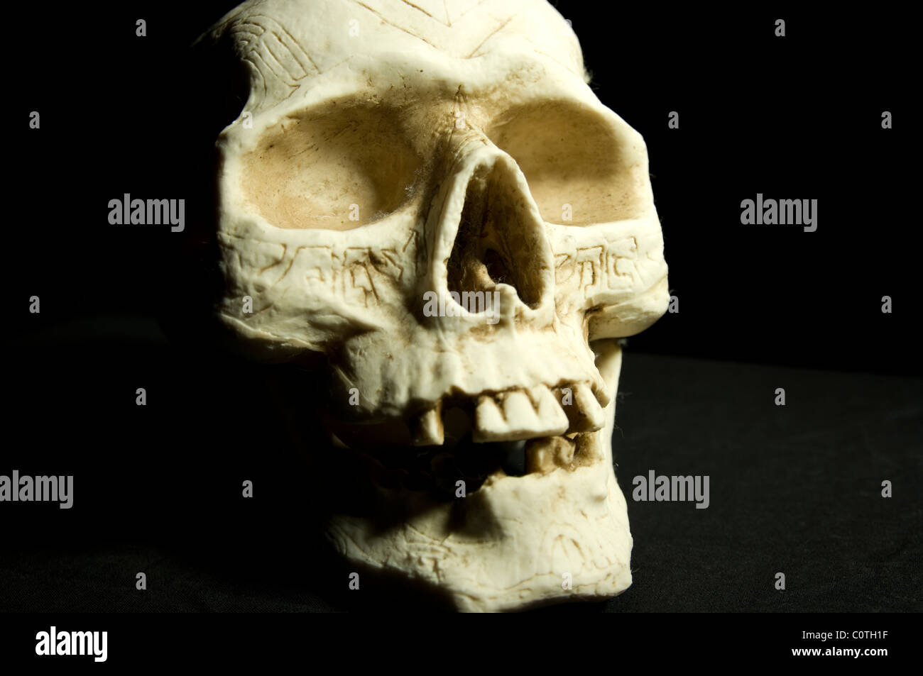 A ceramic skull with etchings on it. - Stock Image