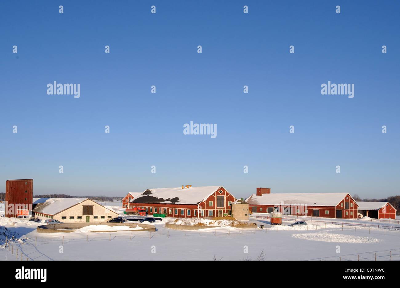 Swedish farm in snow. - Stock Image