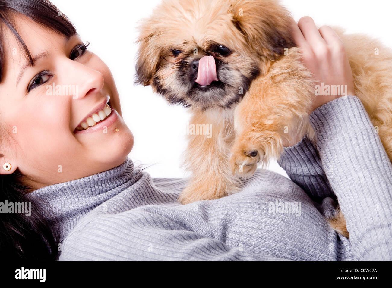 Brunette woman with a cute little pekingese - Stock Image