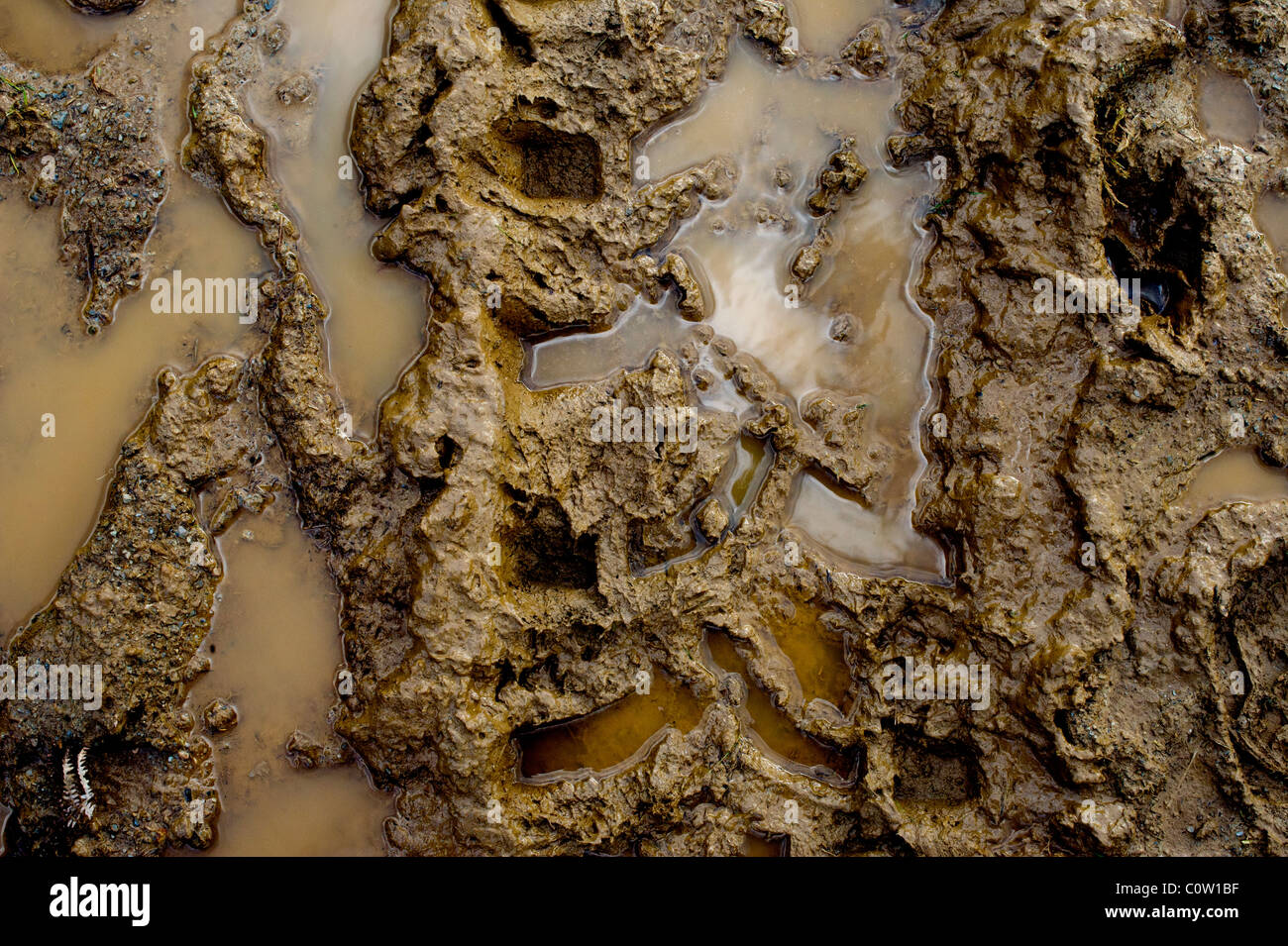 A  muddy puddle on a path on Exmoor - Stock Image