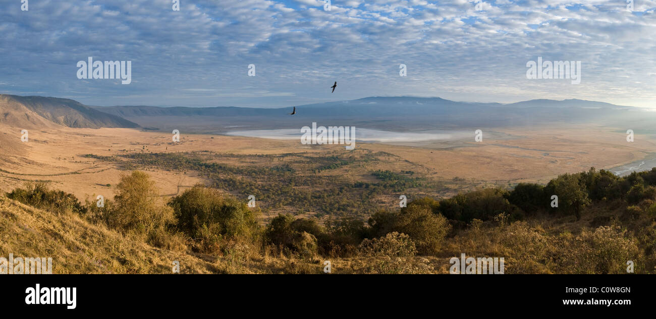 View into Ngorongoro Crater from the Ascent Road Tanzania Stock Photo
