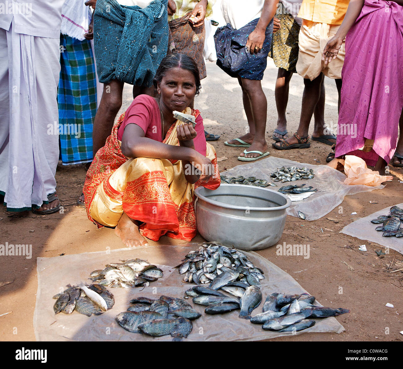 Keralite women wait to sell their fish at a roadside fish market in the Backwaters, Kochi, Kerala, India - Stock Image
