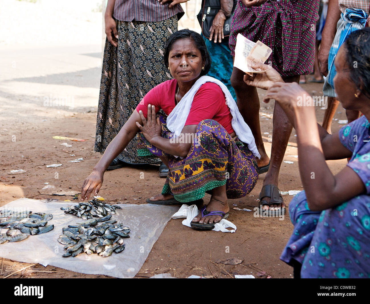 A Keralite woman sells her fish at a roadside fish market on the Backwaters, Kochi, Kerala, India - Stock Image