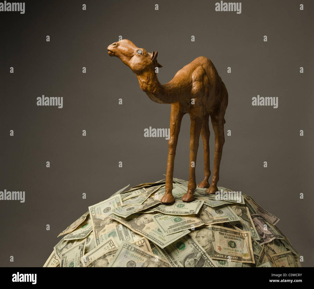 model of camel standing on mound of US paper currency - Stock Image