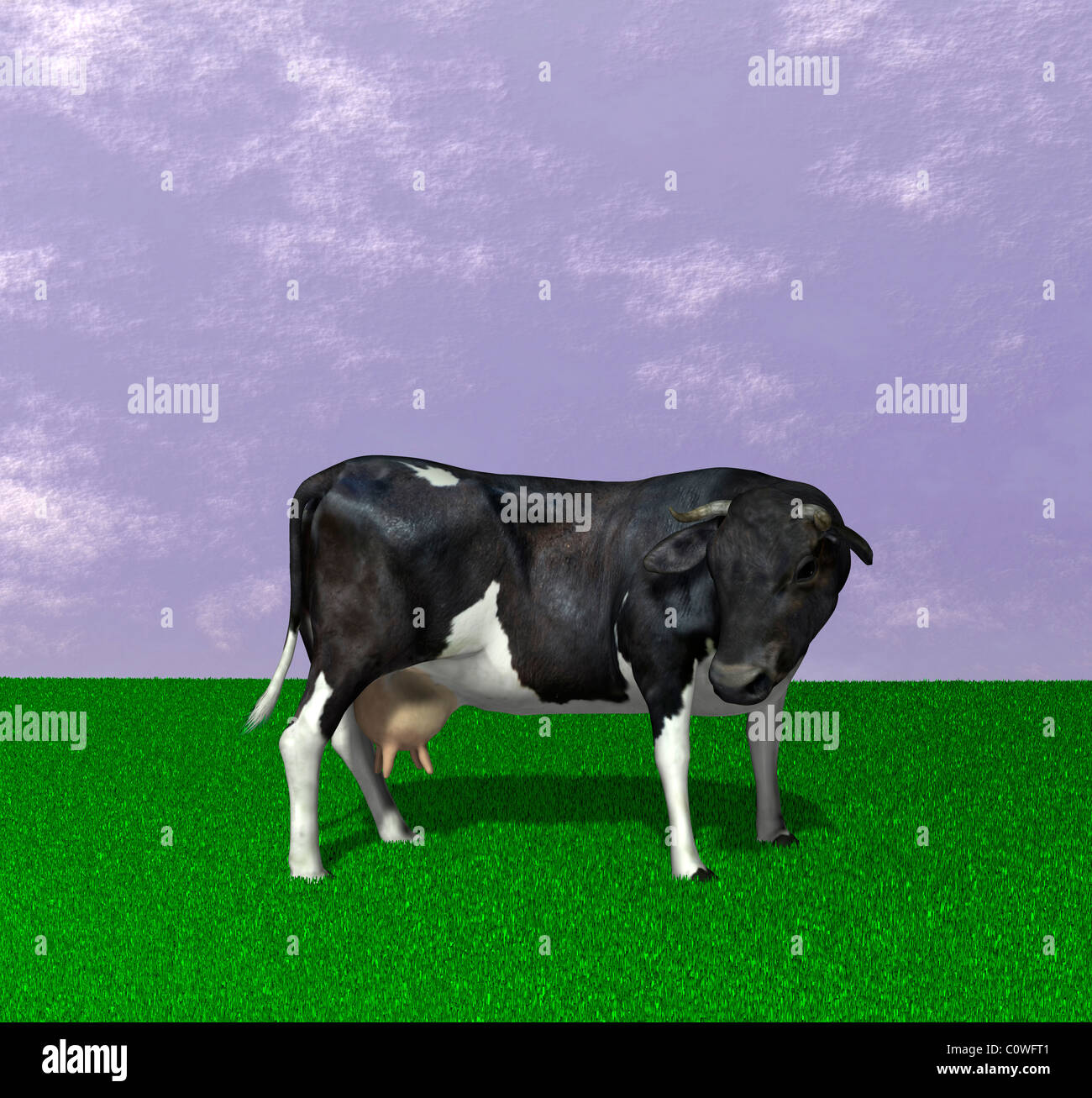 cow illustration - Stock Image