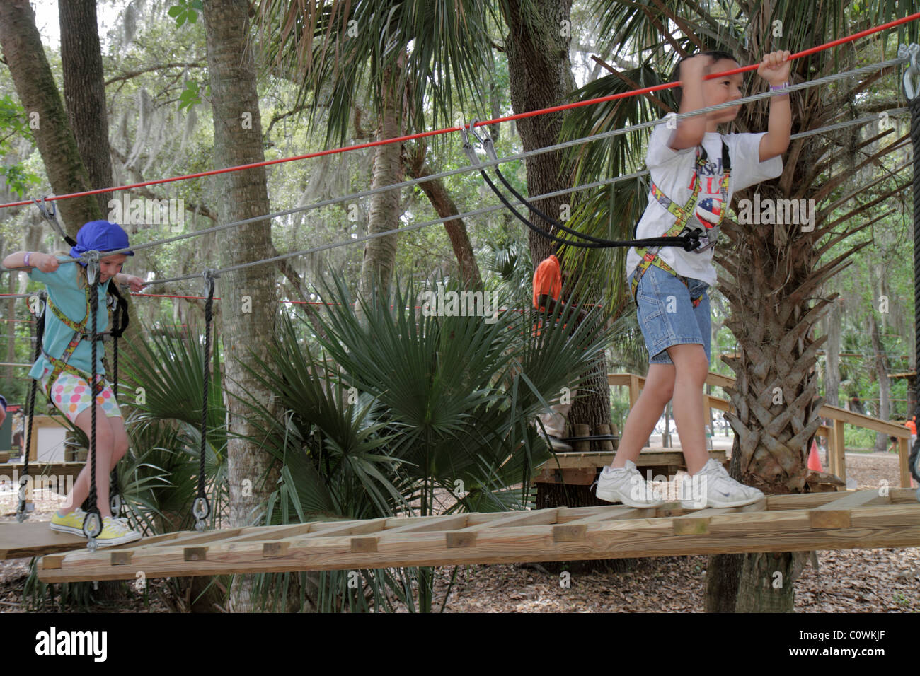 Orlando Florida Sanford Central Florida Zoo & and Botanical Gardens ZOOm Air Adventure Park aerial treetop tree Stock Photo