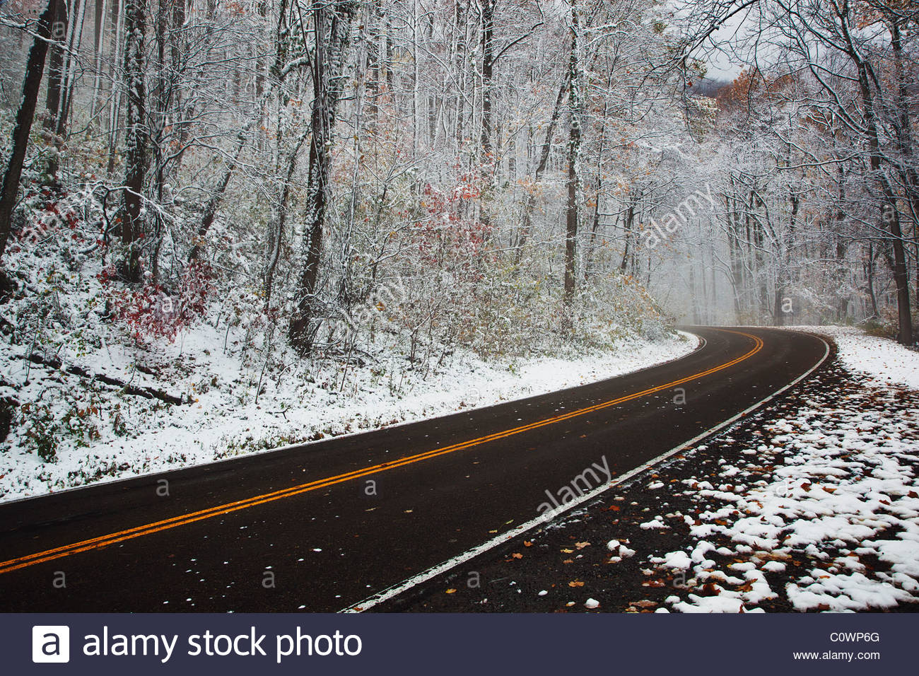 Early Snow fall along Newfound Gap Road in the Great Smoky Mountains National Park - Stock Image