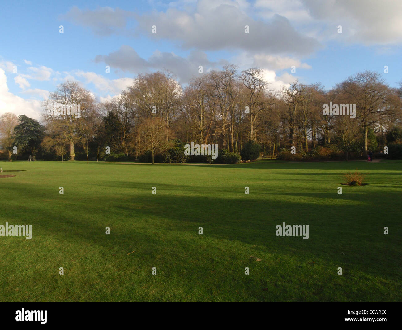 View of the Lawn and Trees at Dunham Massey in Cheshire England - Stock Image