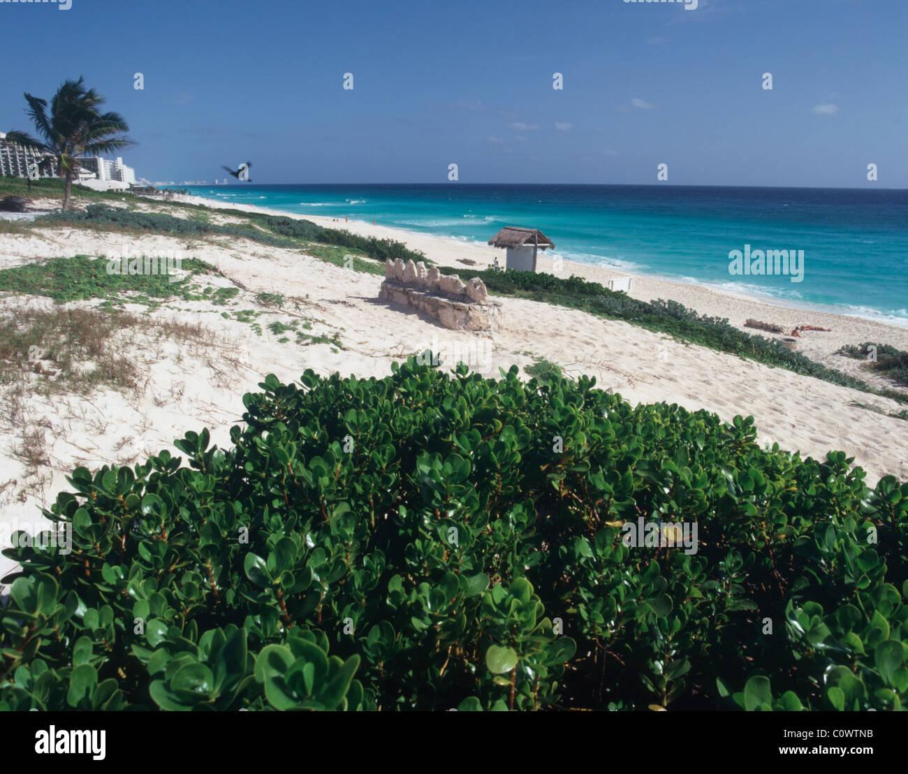Playa Delfine, Cancun Mexico - Stock Image