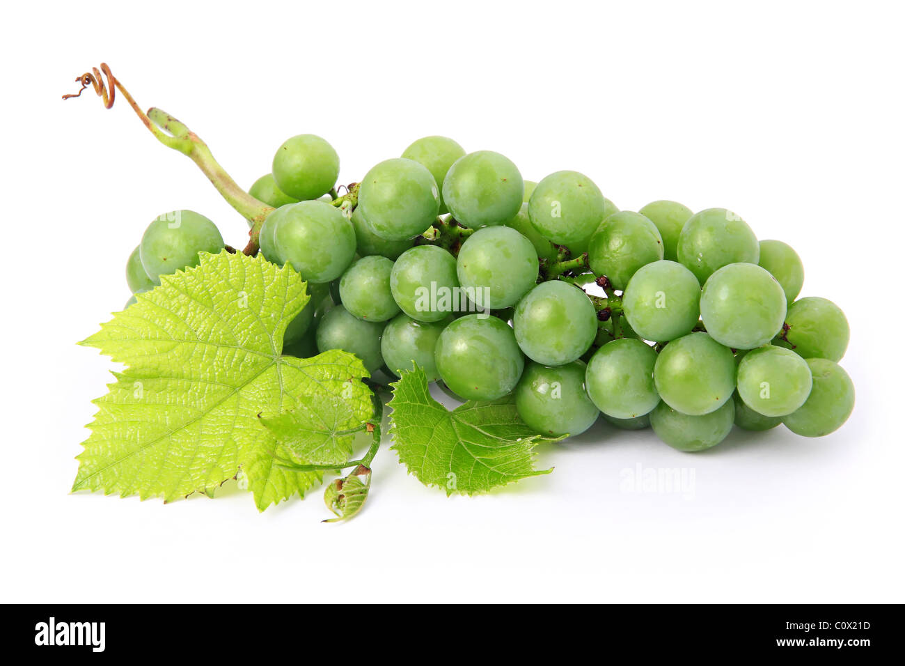 Fresh grape fruits with green leaves isolated - Stock Image