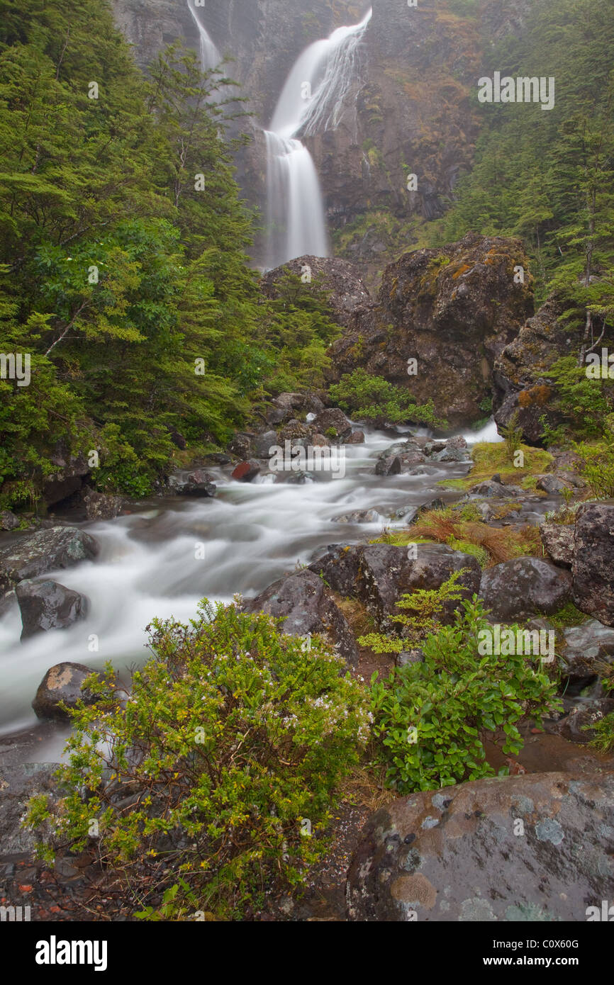 Waitonga Falls, Tongariro National Park, North Island, New Zealand (on the slopes of Mt Ruapehu) - Stock Image