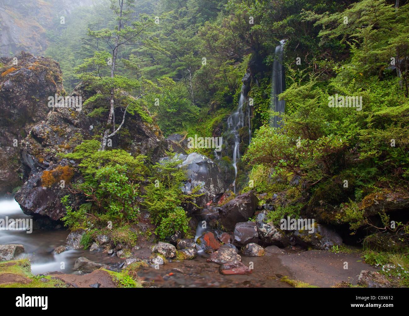 waterfall, Tongariro National Park, North Island, New Zealand - Stock Image