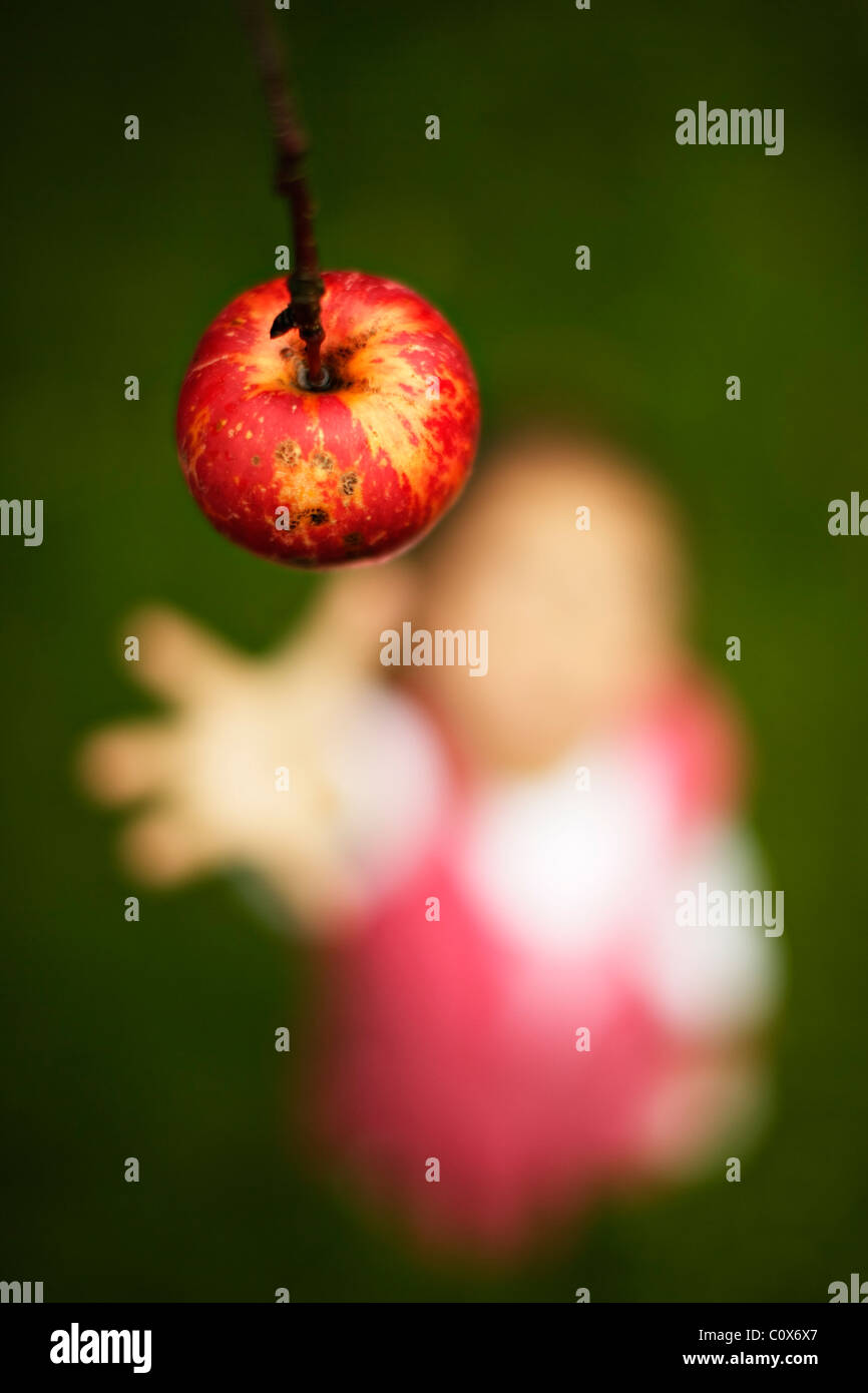 Girl reaches for red apple on tree - Stock Image