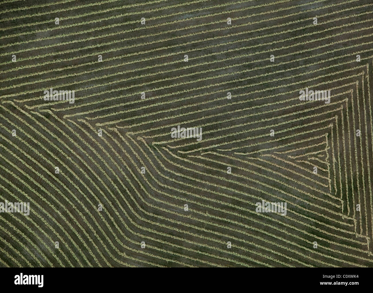 aerial view above harvested hay northern California - Stock Image