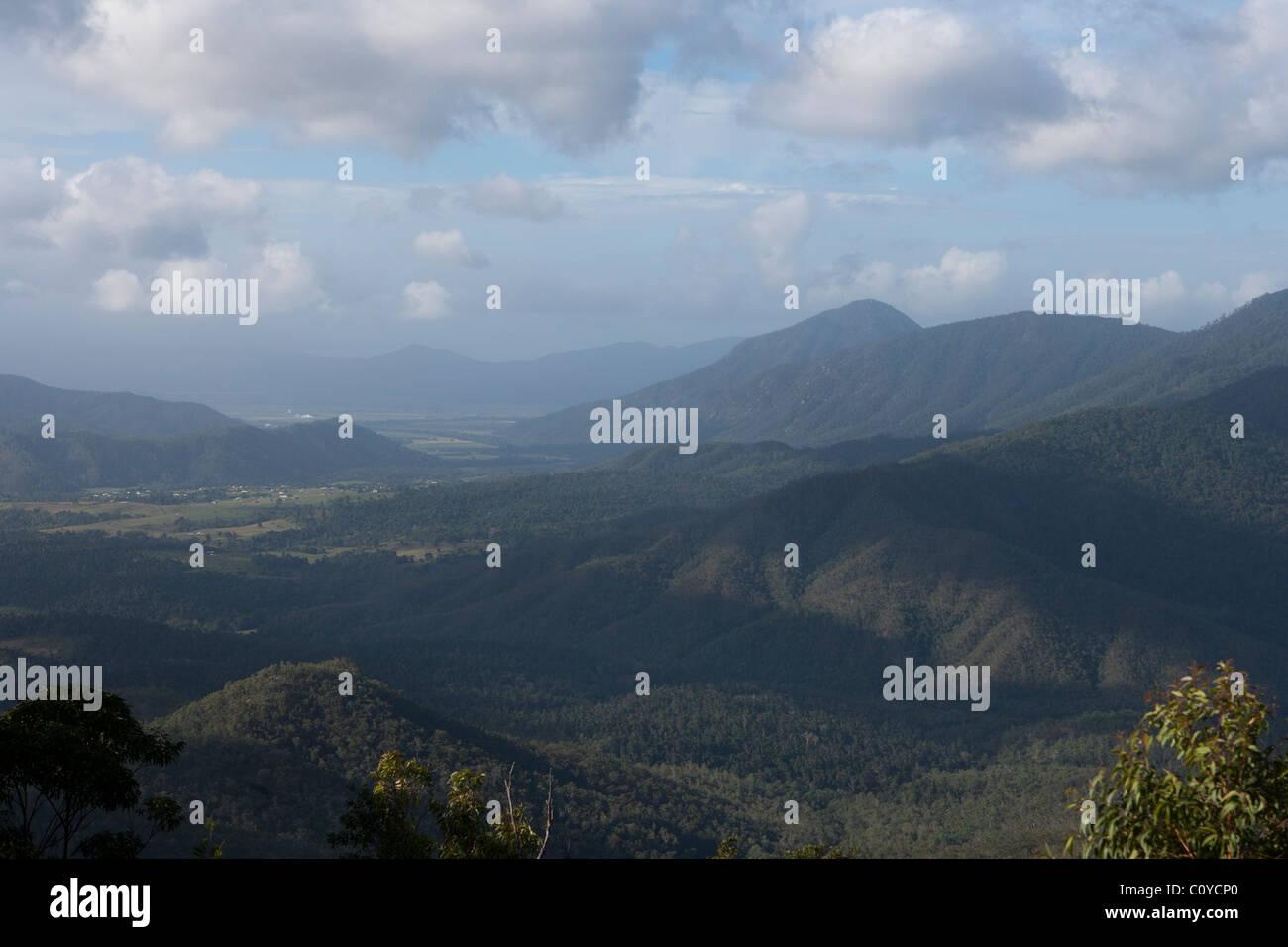 Eucalyptus gum forests. Queensland Tablelands. - Stock Image