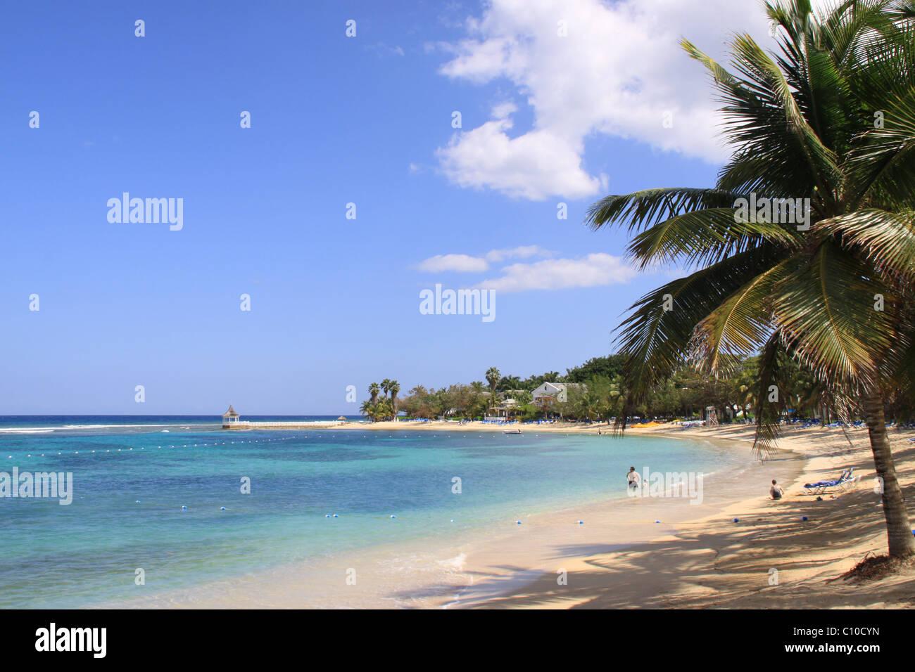 beach, ocean, sea, palm tree, holiday idylic, vacation, Jamaica, Caribbean - Stock Image